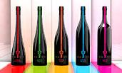 Weinflaschen Produktdesign